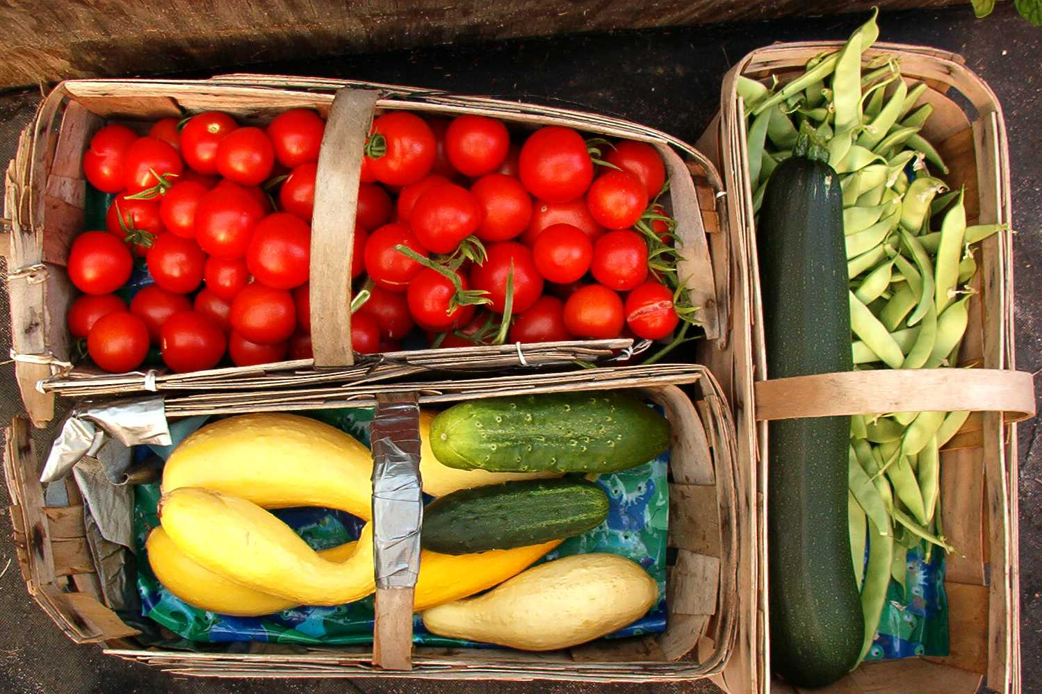 Freshly grown and packaged vegetables